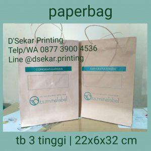 tas-kertas-paperbag-shopping-bag-cetak-sablon-tas-kertas-dsekar-printing-081904271640-082225086283-jogja-semarang-ambon-denpasar-jakarta-bekasi-tangeran (16)